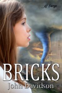Bricks_cover