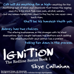 Teaser Wednesday! Ignition by Skye Callahan